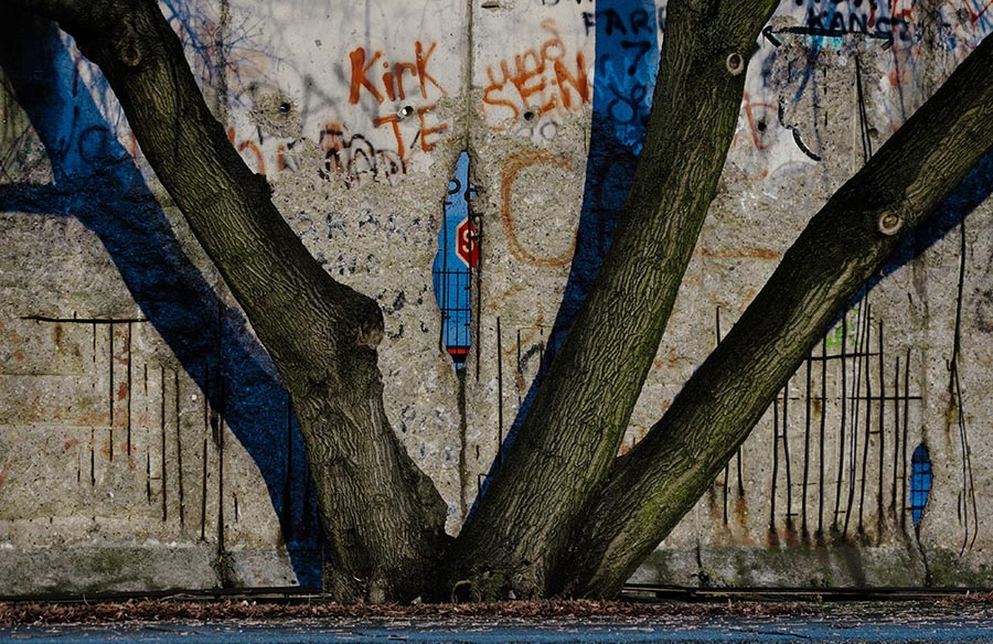 Berlin Wall with Tree