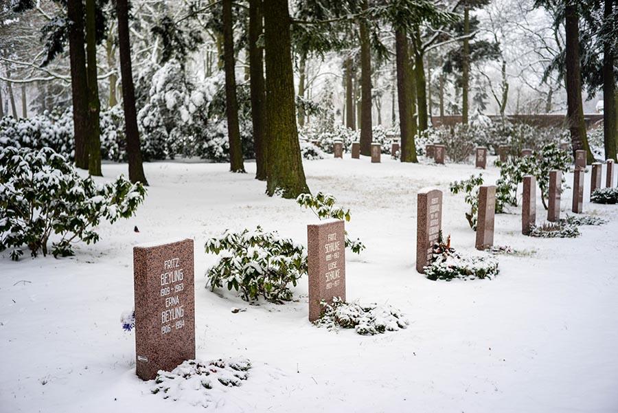 Zentralfriedhof Freidrichsfelde