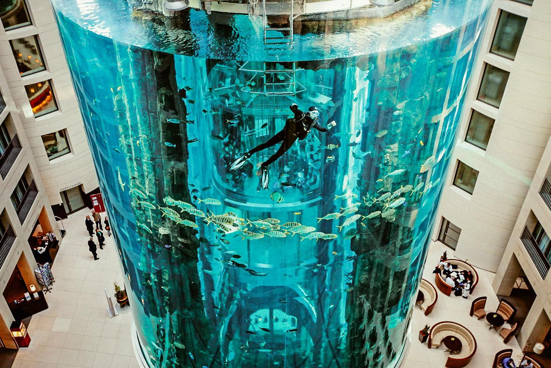 Berlin Acquarium Radisson Blu